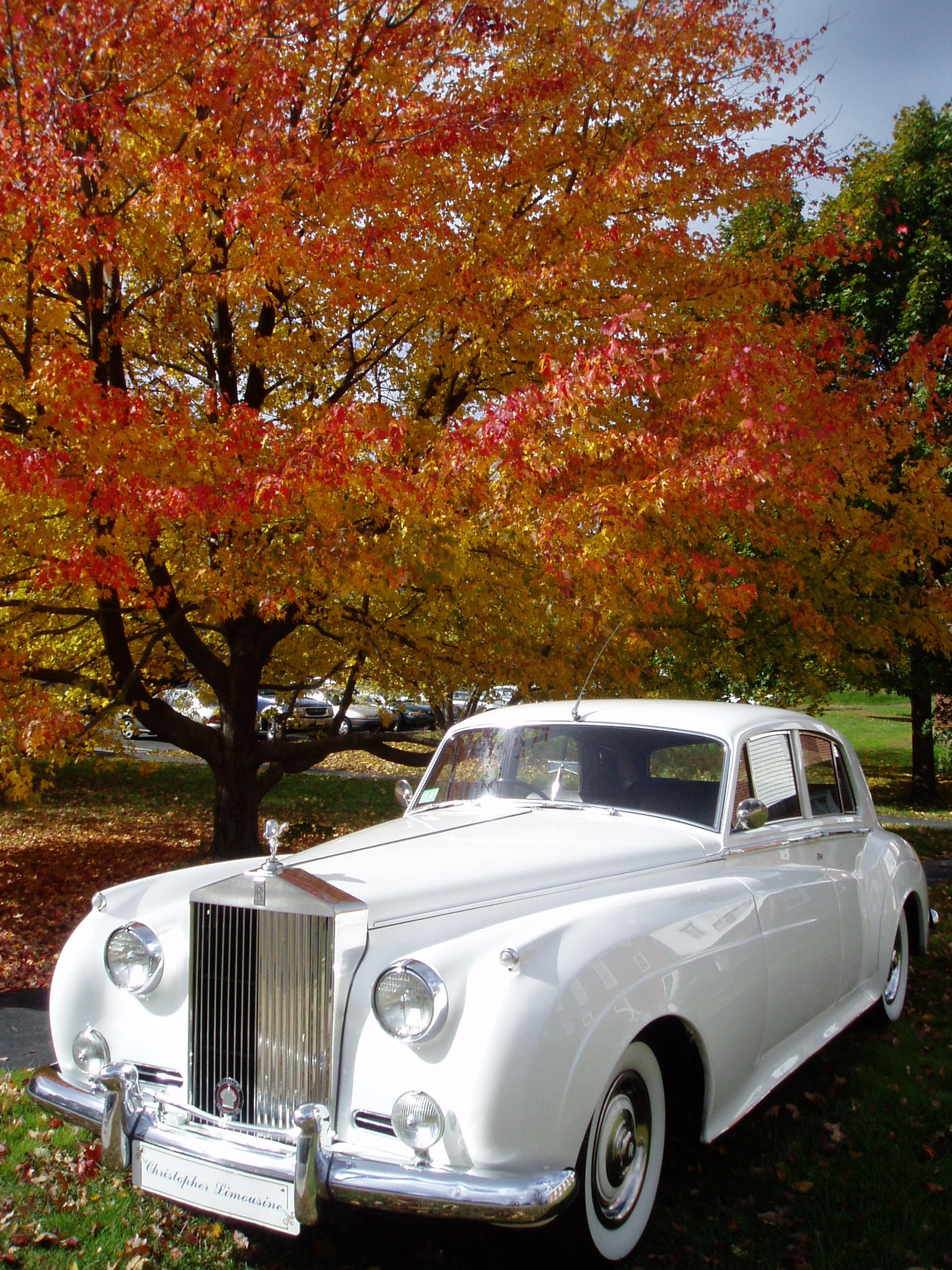 1959 Rolls Royce Vintage Collection