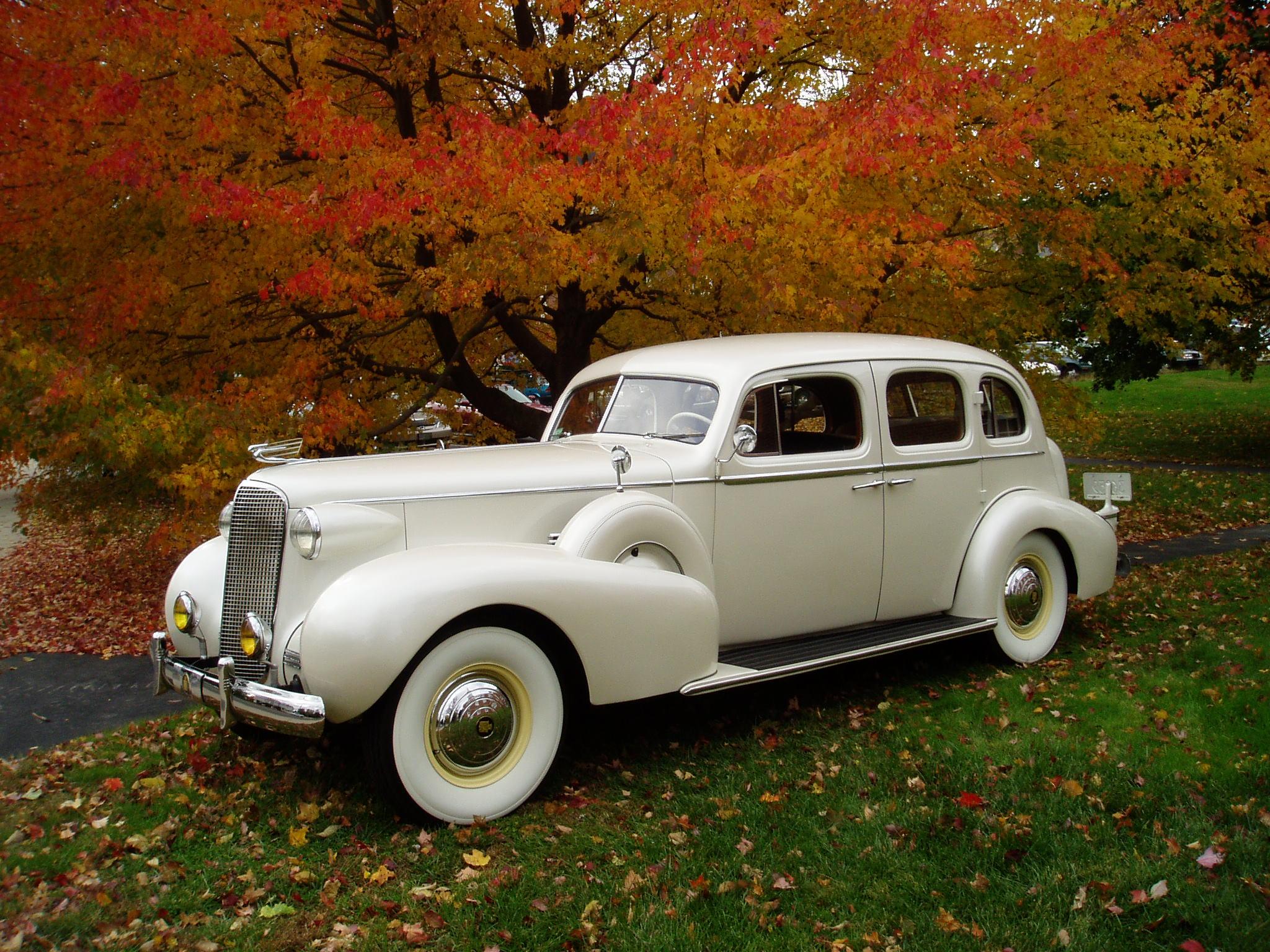 Antique Wedding Transportation: 1937 Cadillac