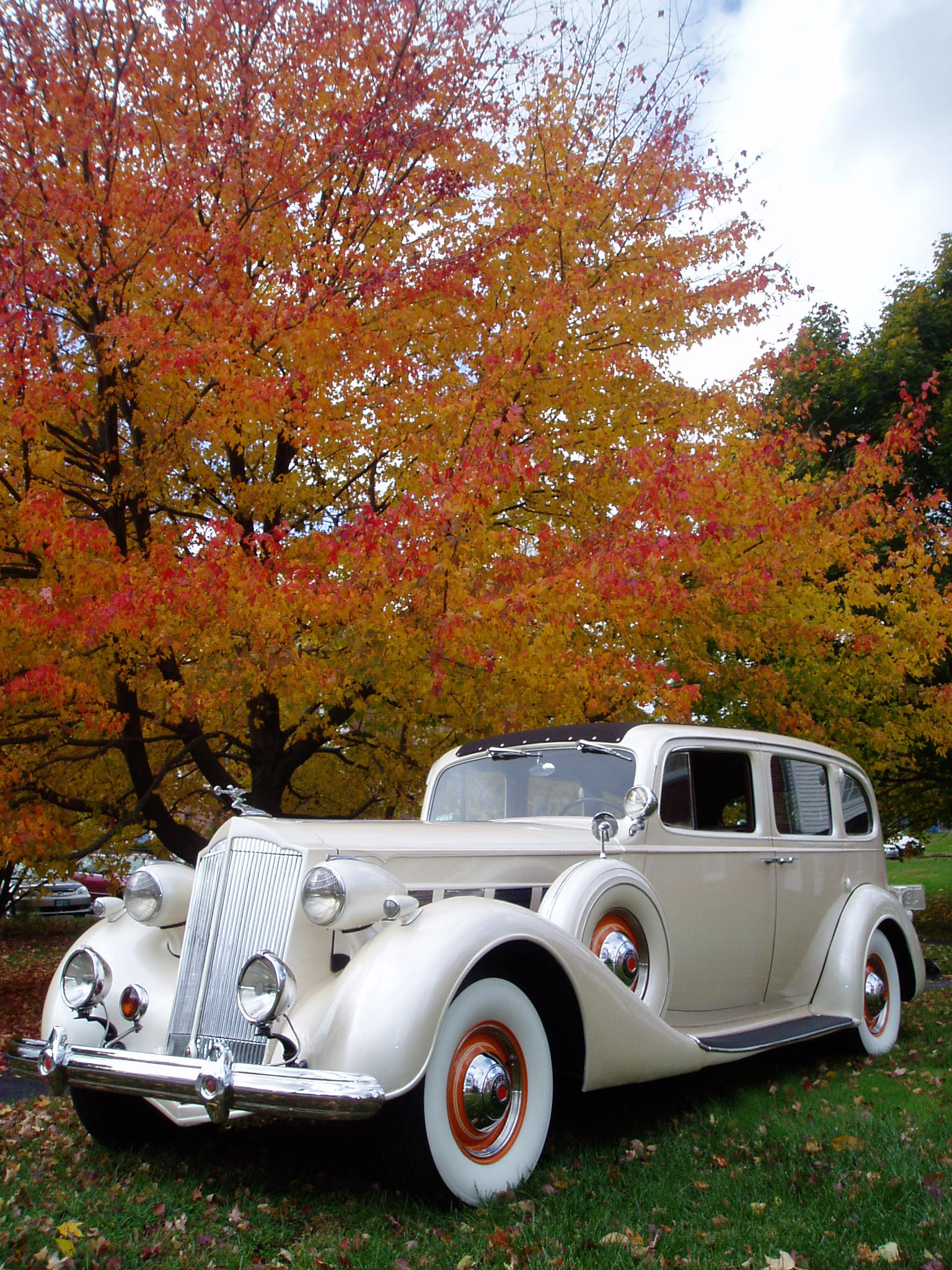 Packard Limousine Antique Car